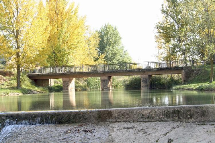 El río Homino. Este río es uno de los pocos de España, donde habita la Nutria Europea, especie protegida.